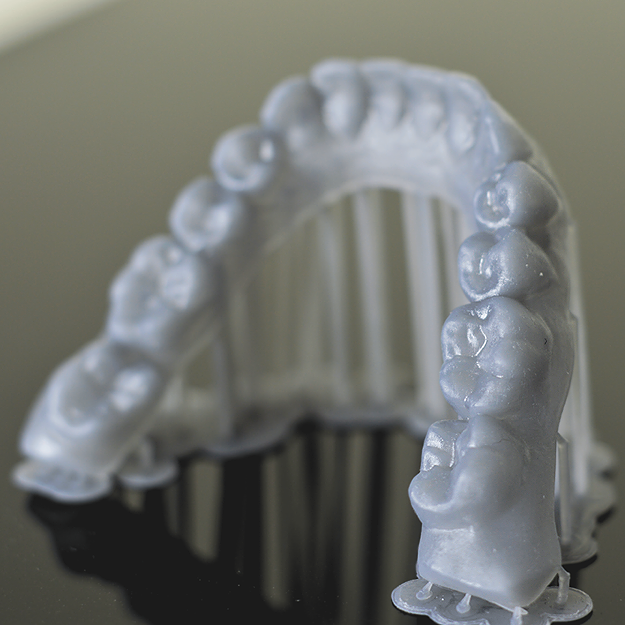 Peopoly Moai 3D Resin Dental Print