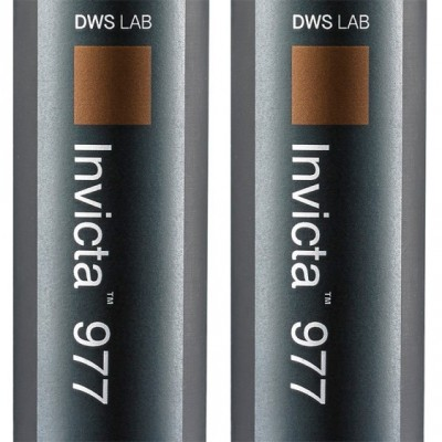 DWS Invicta 977 Resin Cartridge (set of 2)