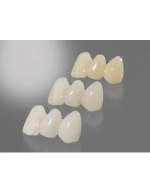 Detax Freeprint® Temp UV A3