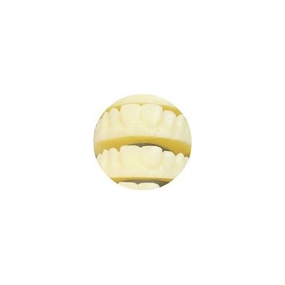 Miicraft Resin for Dental model and Prototyping - 500g