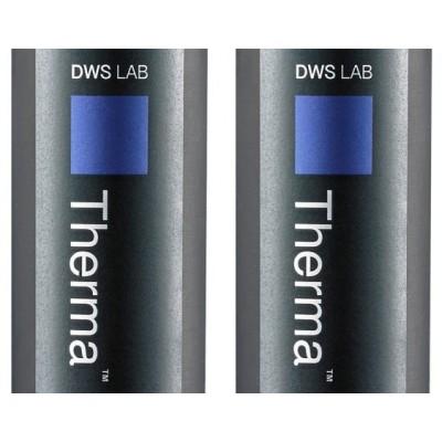 DWS Therma 294 Resin Cartridge (set of 2)