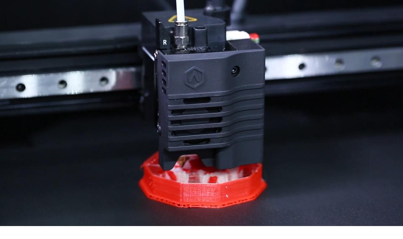Raise3D 3D Printing Dual Material